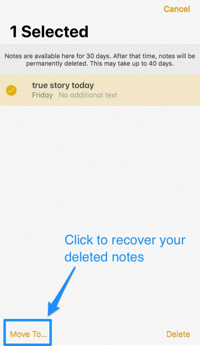 Retrieve Deleted Notes Iphone